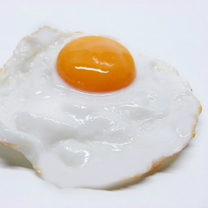 cholesterol in fried egg yolk